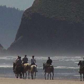 Sea Ranch Stable & Horseback Riding