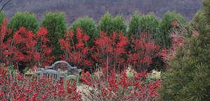 University of Delaware Botanical Gardens