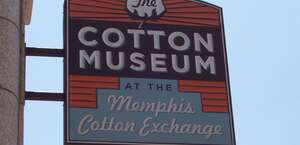 The Cotton Museum