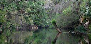 Hillsborough River Paddling Trail