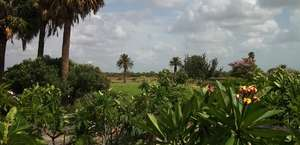 Corpus Christi Botanical Gardens