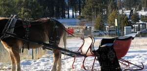 Borges Sleigh & Carriage Rides