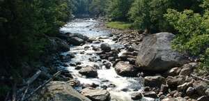 Fly Fish the Adirondacks