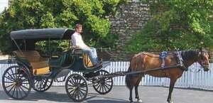 Schultz Coach & Carriage