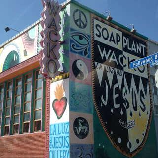 Wacko Soap Plant