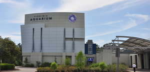 Virginia Aquarium & Marine Science Center