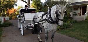 Top Hand Ranch Carriage Company