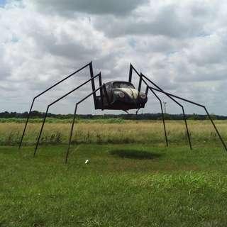 Spider Bug-Wilson VW Auto