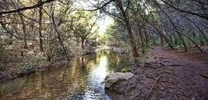 Turkey Creek Dog Park