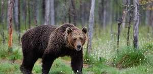 Eden Valley Wildlife Refuge