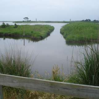 Gordon Pond Wildlife Area