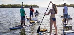iTrekkers Tampa Paddle Tour - Upper Tampa Bay Preserve