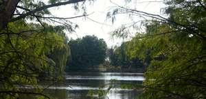 Greensboro Bicentennial Gardens