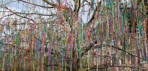 The Bead Trees