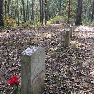 Confederate Gravesites