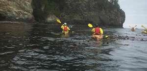 Adventures Through Kayaking