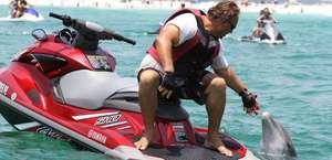 AAA Jet Ski Shell Island Dolphin Tour