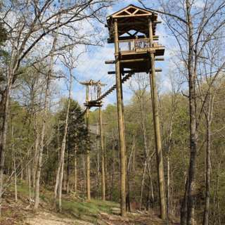 Branson  Zipline and Canopy Tours at Wolfe Creek Preserve