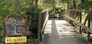 Morris Bridge Wilderness Park