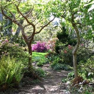 The Connie Hansen Garden Conservancy