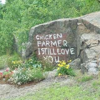 Chicken Farmer Rock