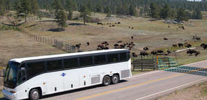 Gray Line Tours of the Black Hills