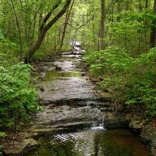 Springfield Conservation Nature Center