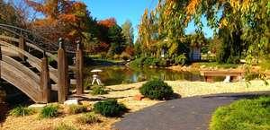 Mizumoto Japanese Stroll Garden
