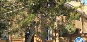 Snowbird Condos At Mammoths Canyon Lodge