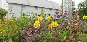 Woldumar Nature Center