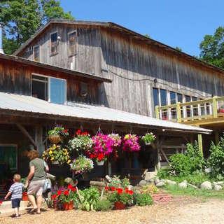 Pond Hill Farm & Garden Cafe