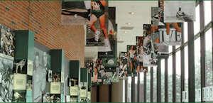 Michigan State University - Athletics Hall of Fame